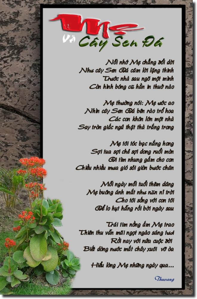 Mẹ & cây sen đá copy.jpg